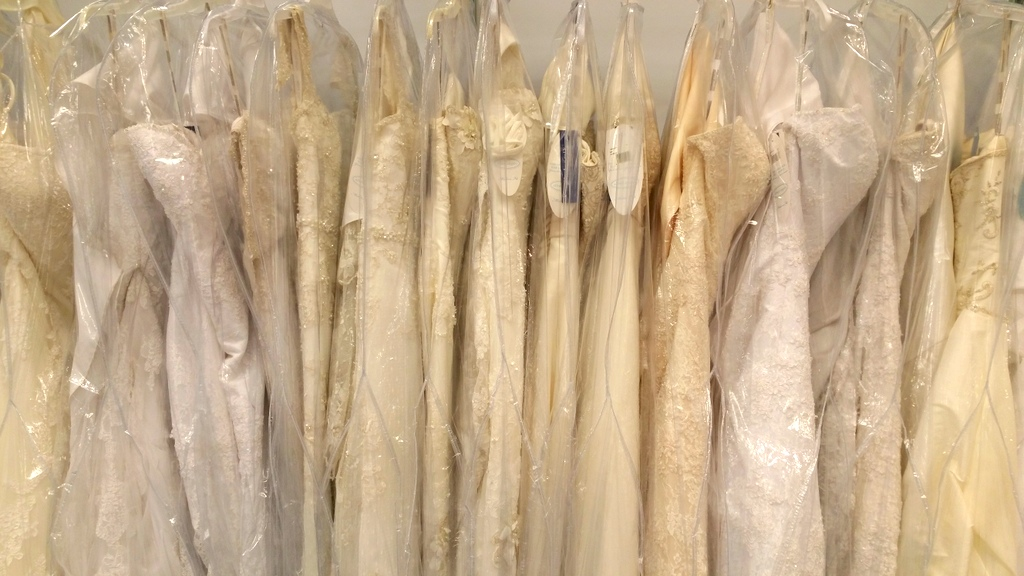 Wedding Dresses in Alfred Angelo