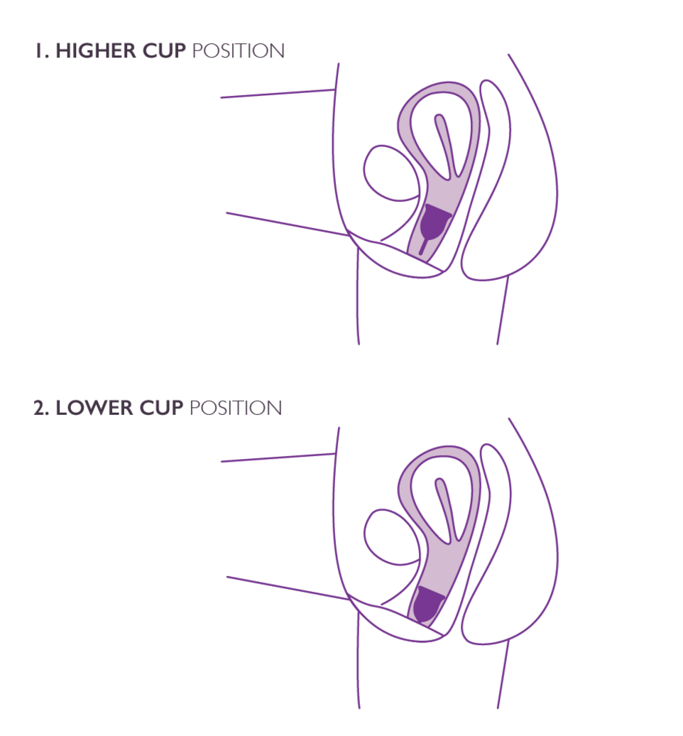 Menstrual Cup position