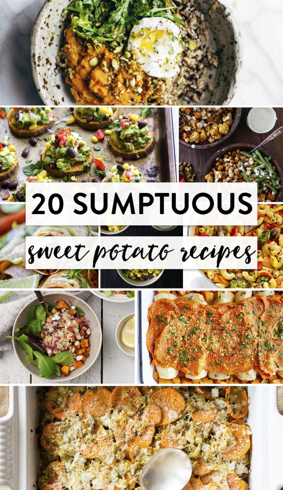 20-sumptuous-sweet-potato-recipes-full-text